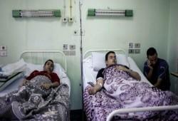 ارتفاع عدد حالات تسمم الطلاب إلى 55 حالة في أسوان