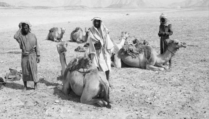 كيف عاش صعاليك العرب؟