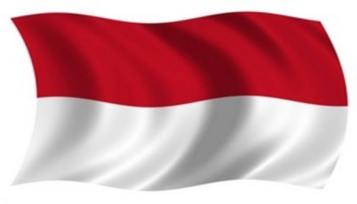 تاريخ الإخوان المسلمون في إندونيسيا