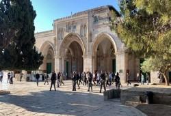 """الأردن يدين استمرار الانتهاكات الإسرائيلية في """"الأقصى"""""""