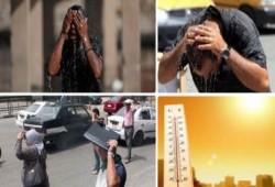 طقس حار على القاهره والوجه البحرى شديد الحرارة على جنوب البلاد